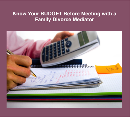 How to Prepare for Meeting with a Family Mediator